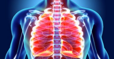 purifier ses poumons naturellement